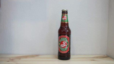 Cerveza Brooklyn East IPA