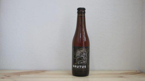 Maximus Brutus