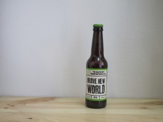 Cerveza Tempest Brave New World