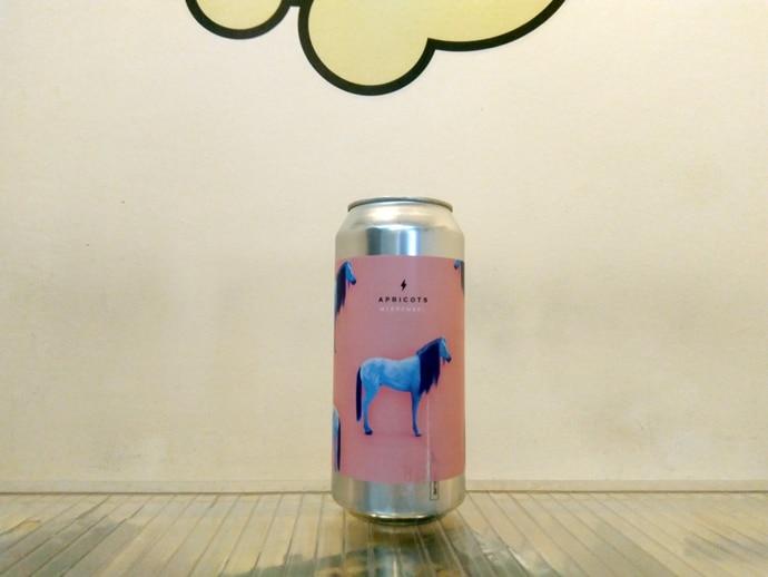 Cerveza Garage Beer - Brewski APRICOTS
