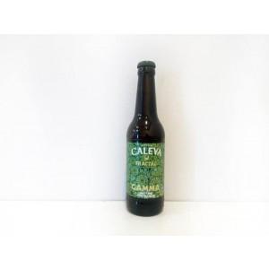Cerveza Caleya Fractal Gamma
